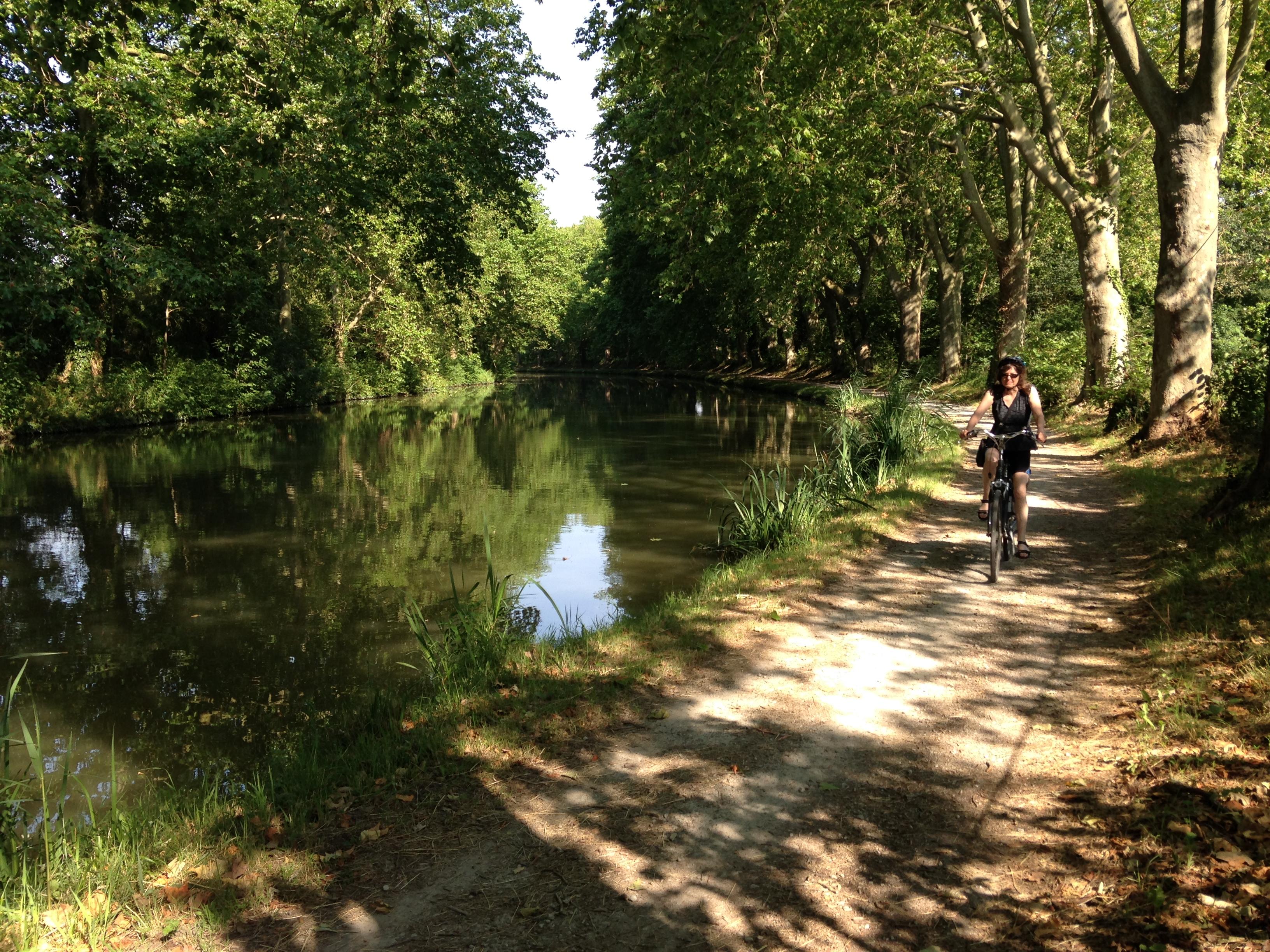 Photograph Canal du Midi: chemin de halage (2014)