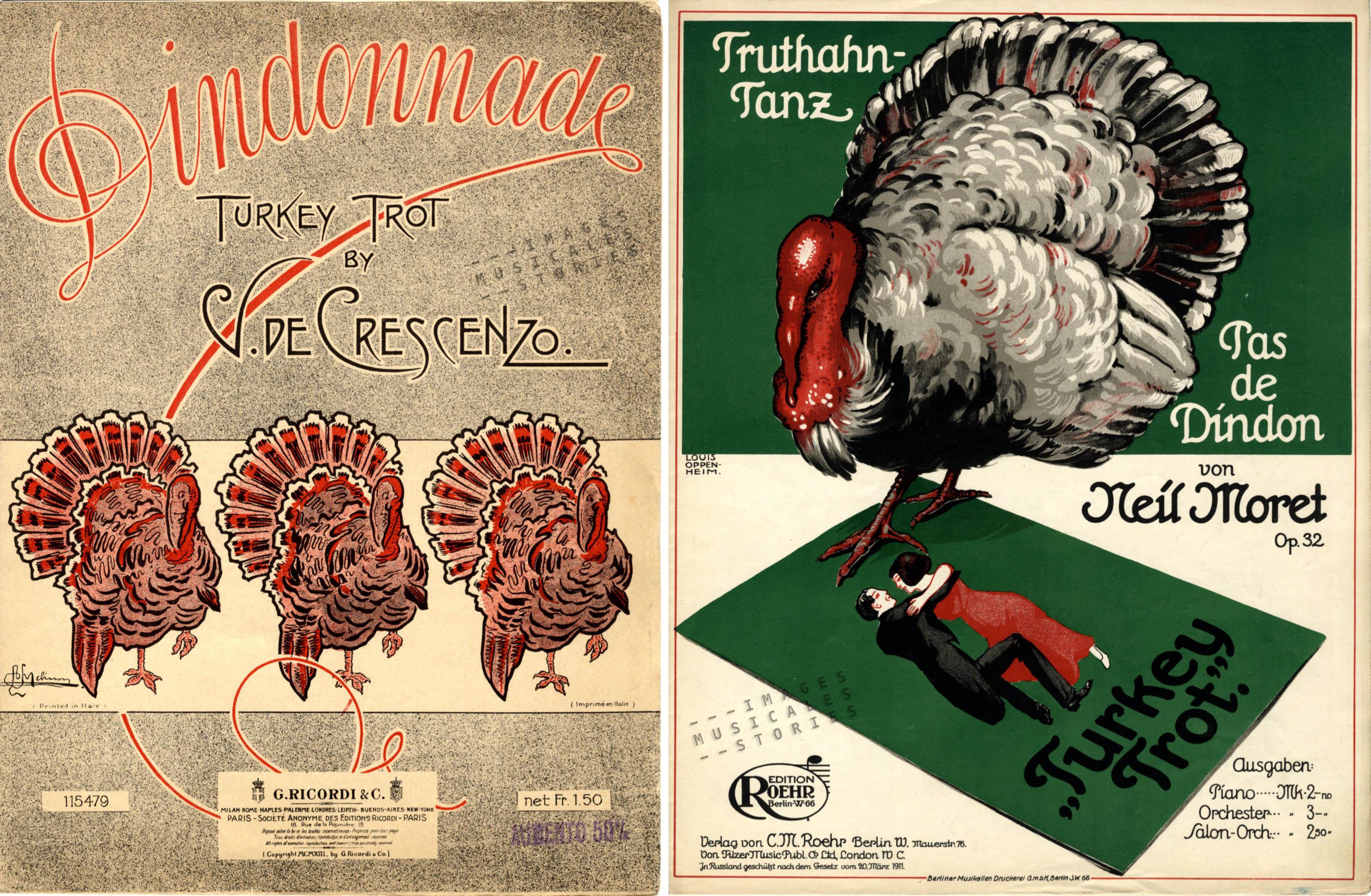 2 turkey trotten
