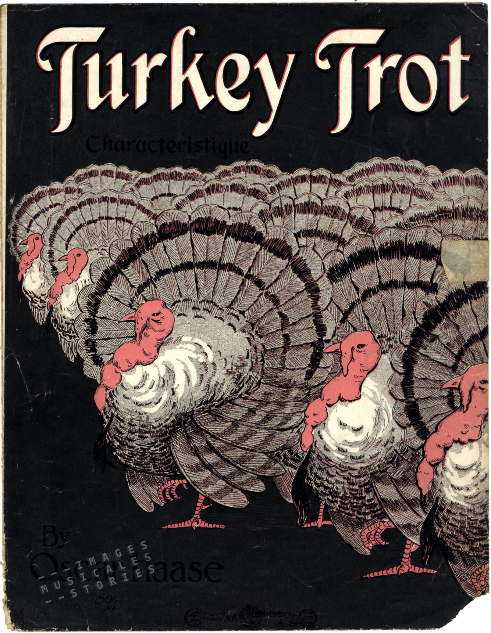 turkey trot 1