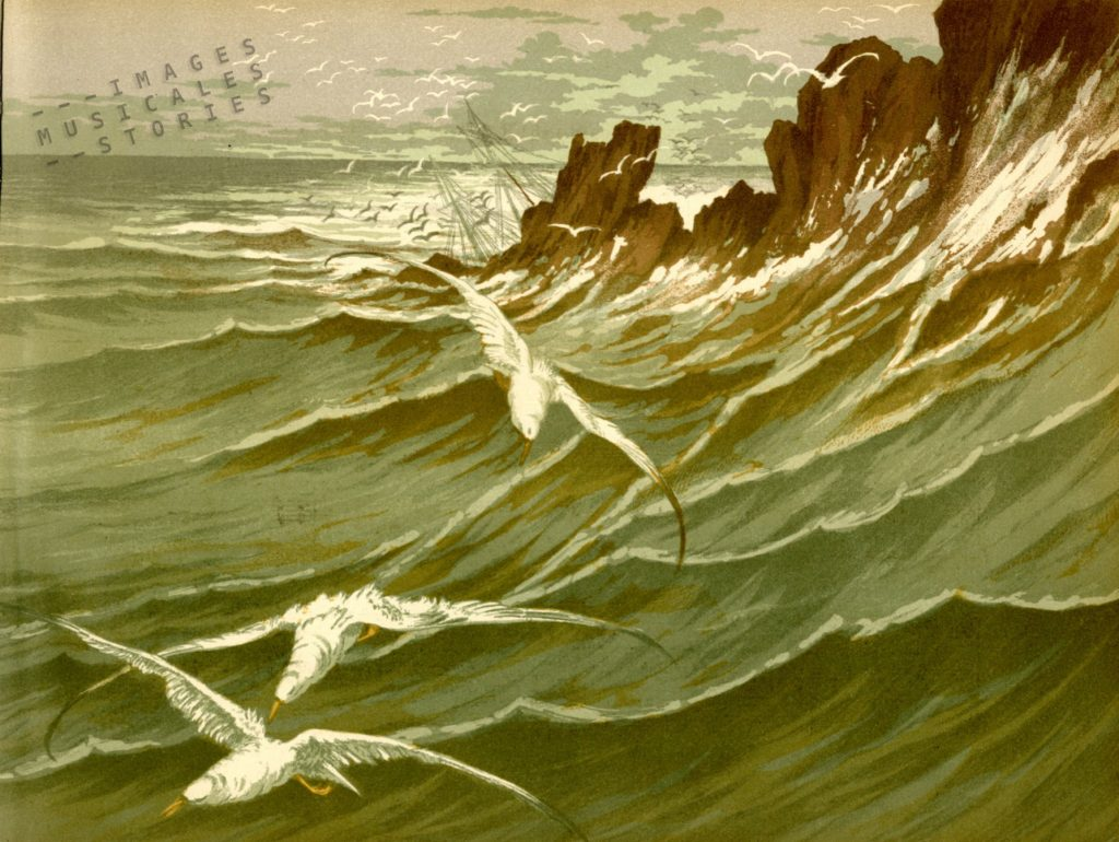 'Les Mouettes - Chanson de Mer' illustration by G. Fraipont